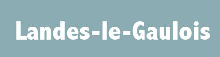 réalisation site internet Mairie de Landes-le-gaulois